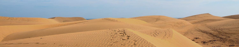 Spuren in einer Wüste